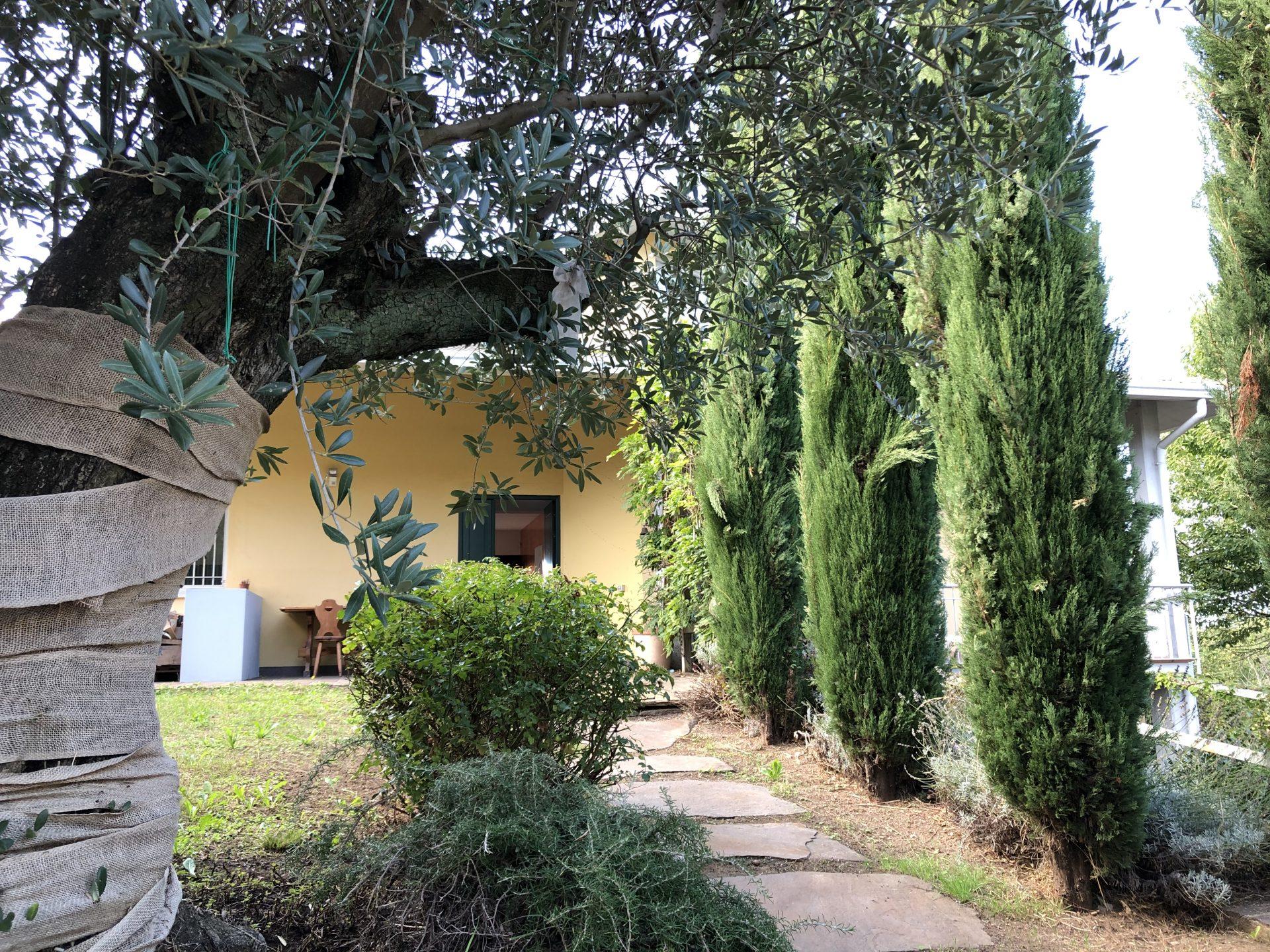 Brunello: villa singola con due unità abitative indipendenti